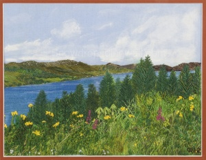 Early summer in lochcarron