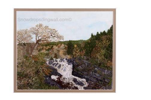 Rogie Falls, Ross shire