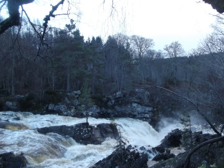 The Falls from the bridge